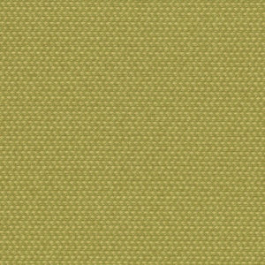 Green Polyester